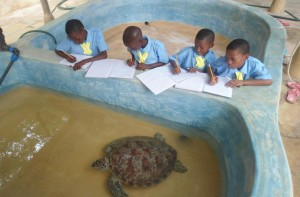 Supporting Conservation and Environmental Education Programmes